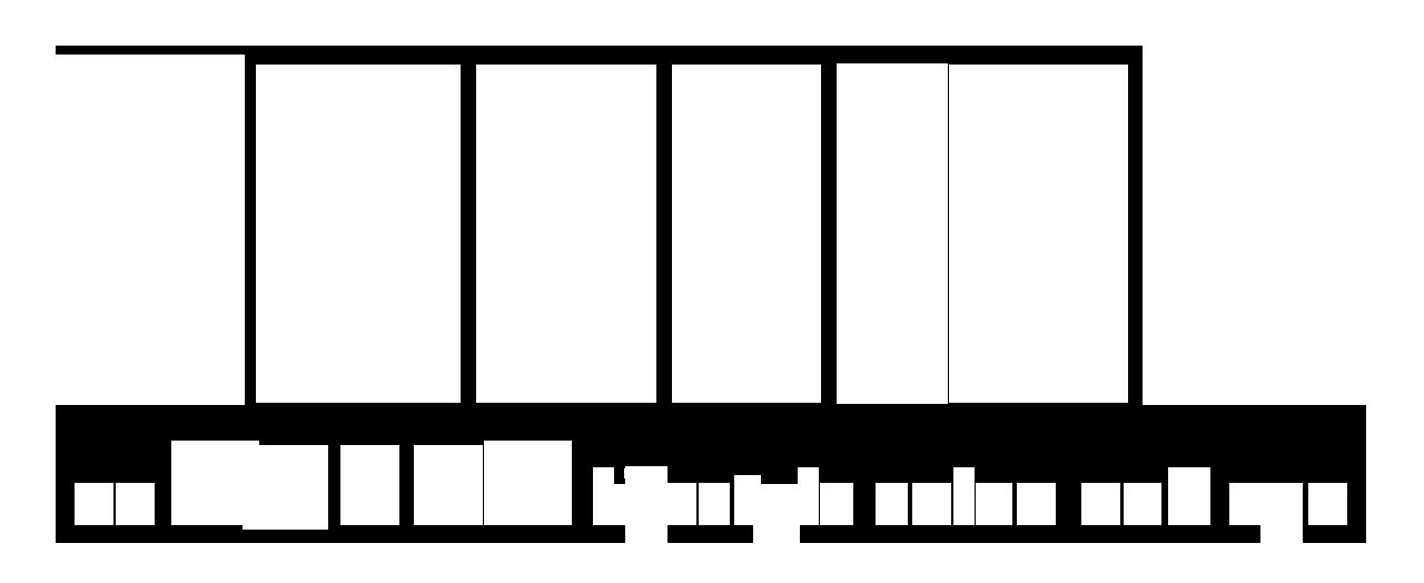 Chelsea Salon & Spa Logo