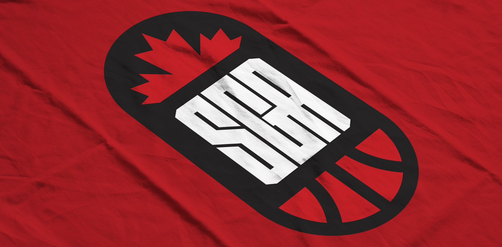 Sports Branding / Sports Design — A logo for an undisclosed NBA player from Canada