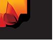 Selenis Logo