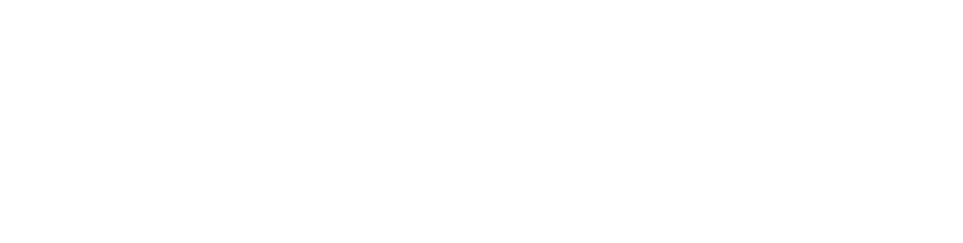 Schmidli Picture Plus Logo white