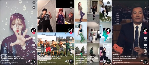 highlights from TikTok's 2018 Rewind video