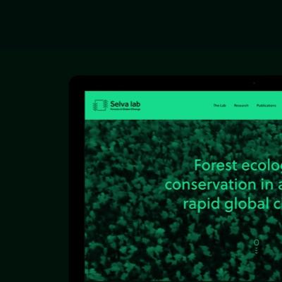 Selva lab official website