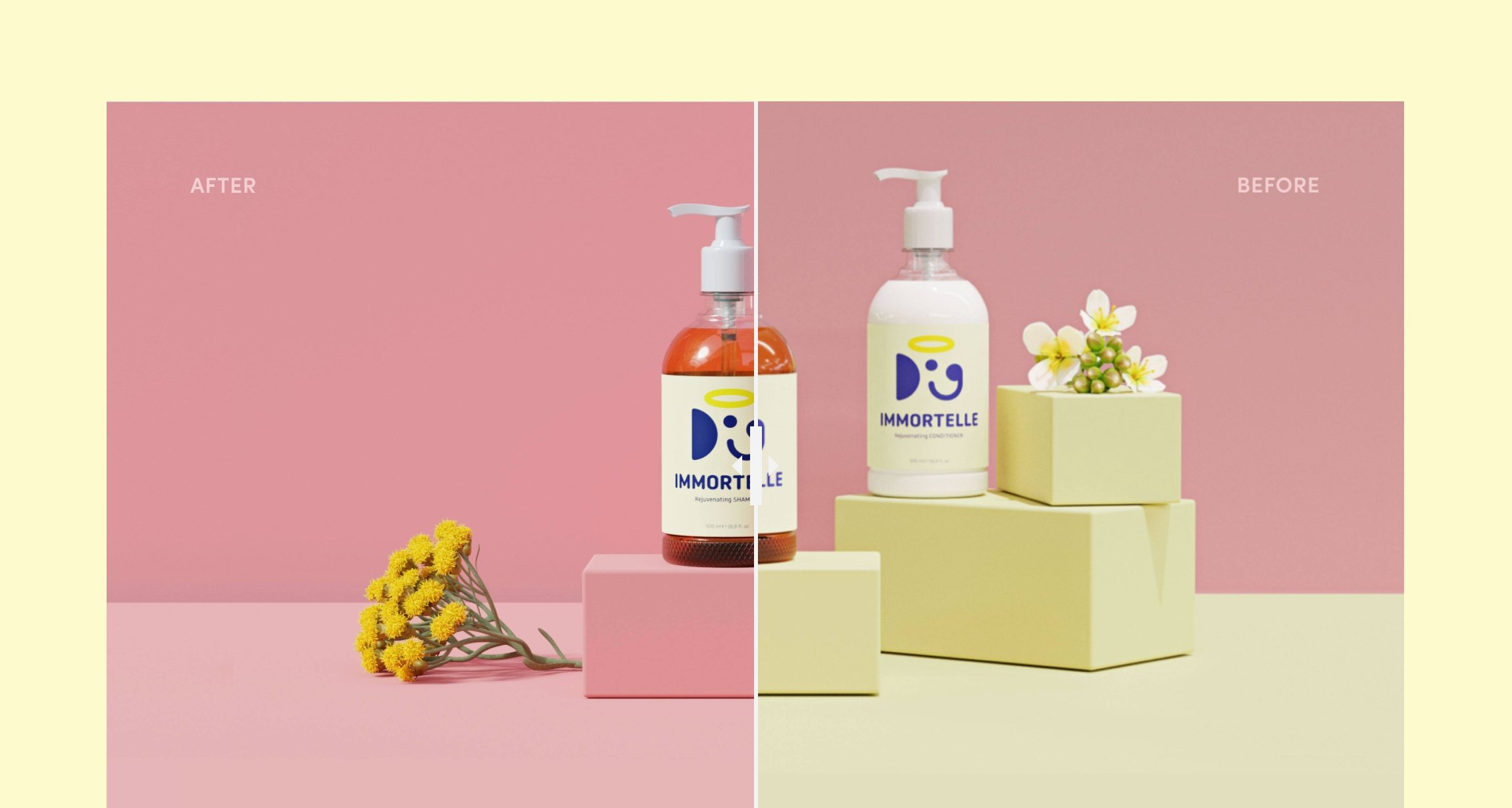 Product render design consultation and art direction for Doglyness