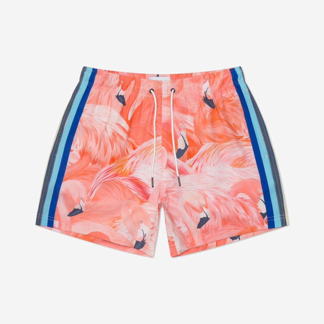 Shorts product photo