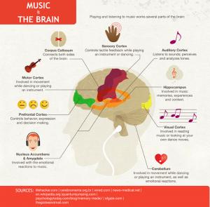 ACMF music brain