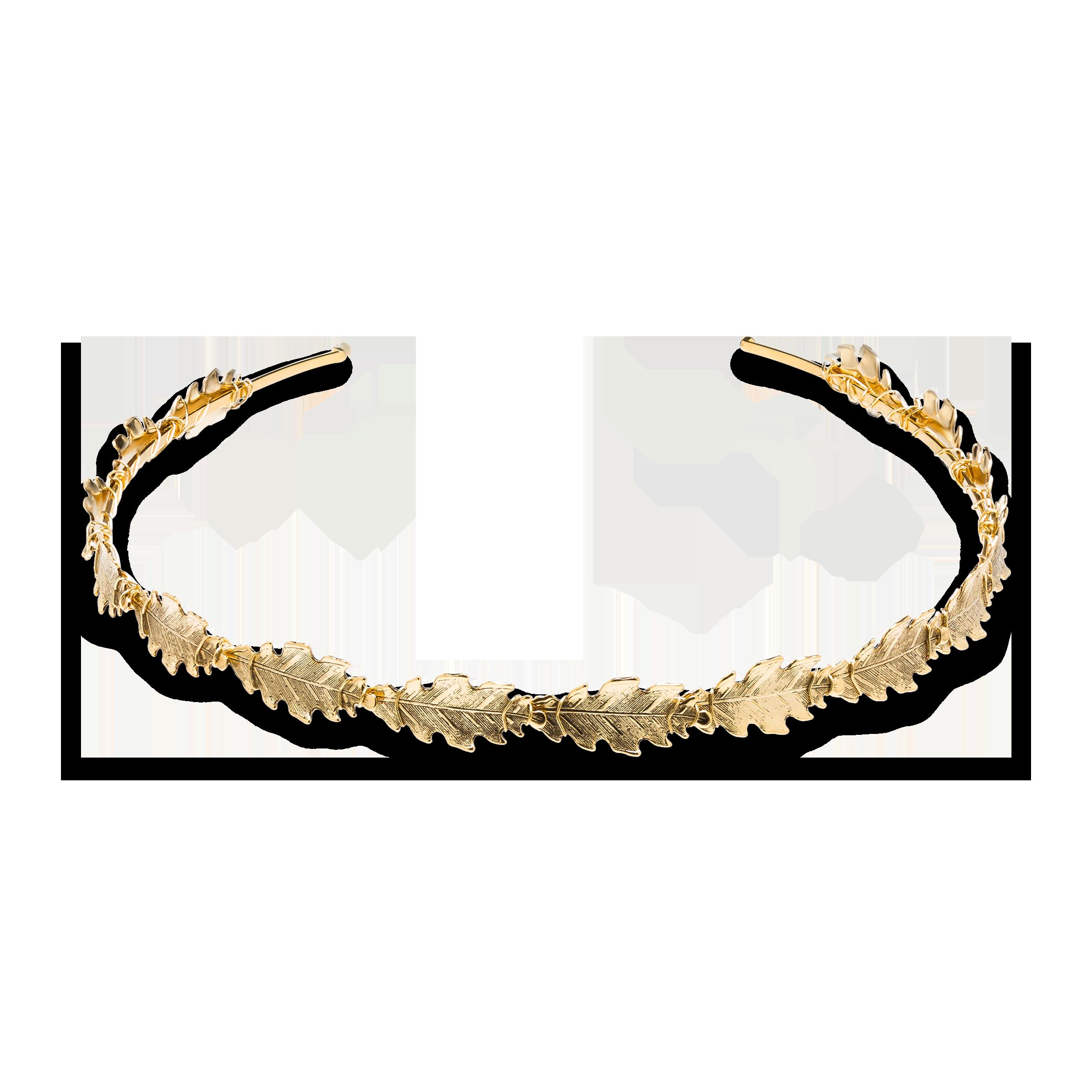 Golden tiara Product Photo