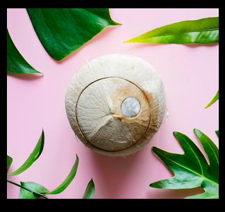 Como inserir a água de coco em sua rotina?