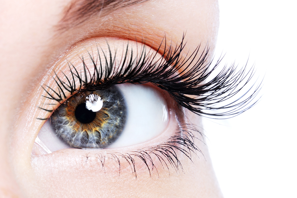 Classic Eye Lash Extension