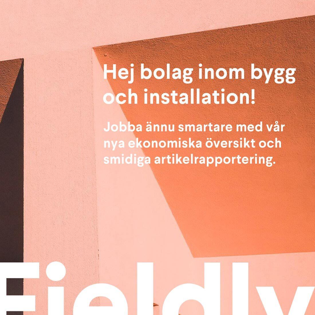Ny ekonomisk översikt och snabbare artikelrapportering med Fieldly