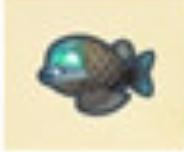 太平洋桶眼鱼