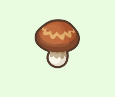 Elegant Mushrooms