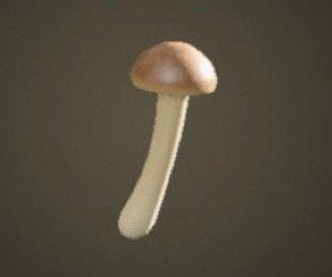 Mushroom Wand