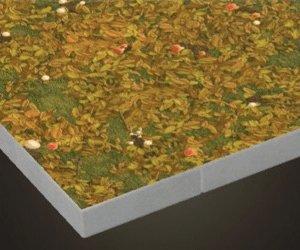 Forest Flooring