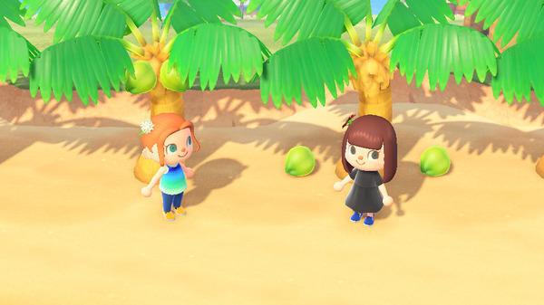 椰子和竹笋