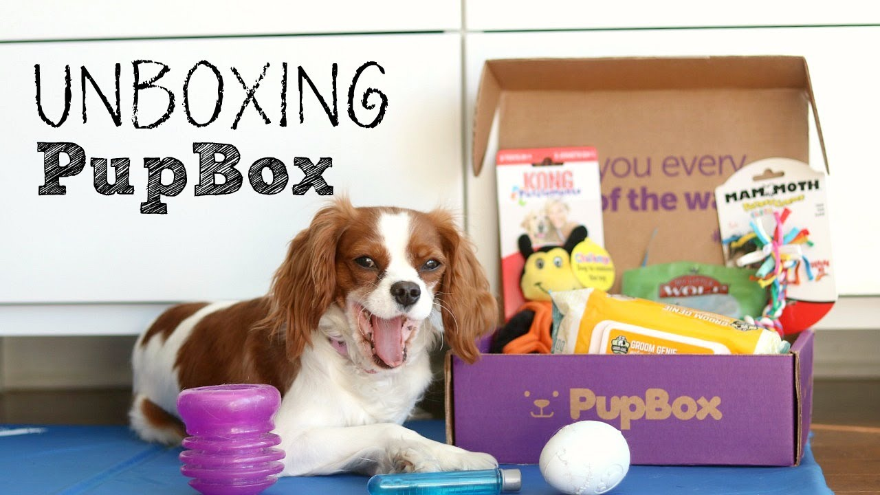 UNBOXING April Pupbox | Review Subscription Box for Dogs | Herky ...