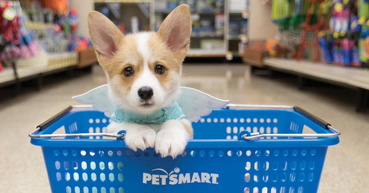PetSmart - The Shoppes at EastChase