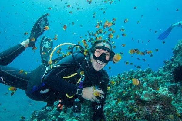 潜水执照 (Scuba Diver Certification)