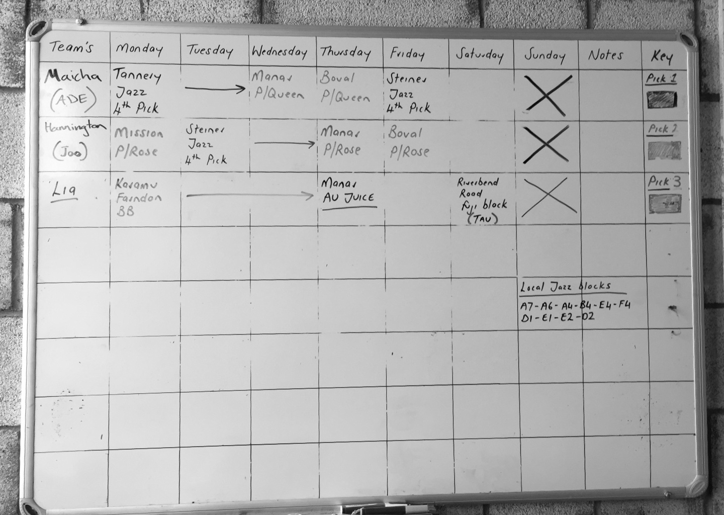 chart with names and days of the week with tasks