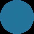 wordpress and webflow expert service  logo