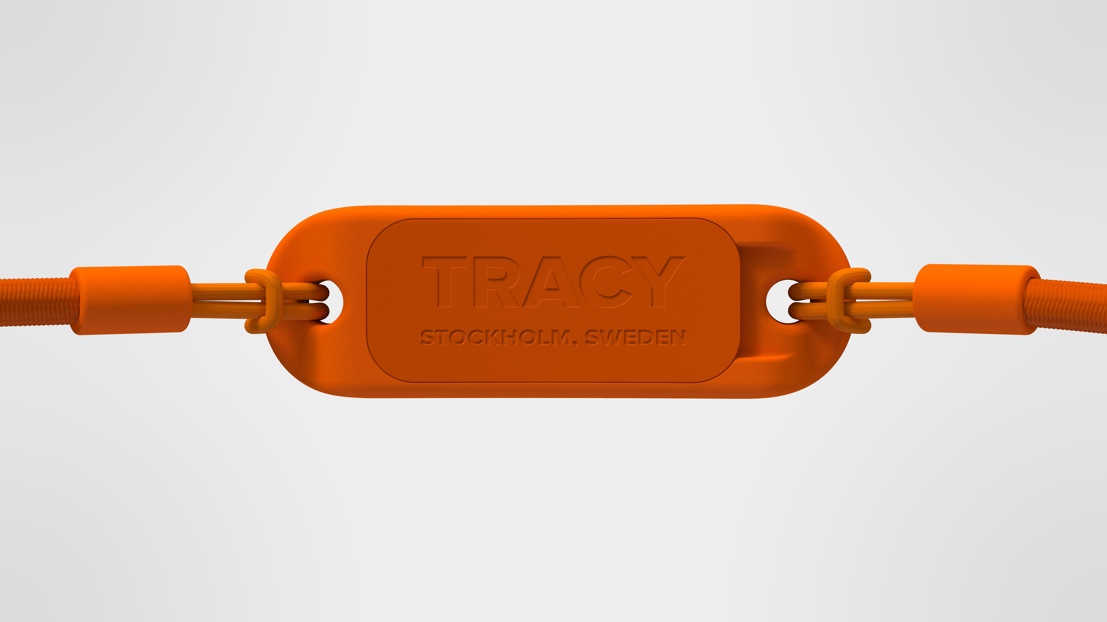Artan Mansouri dog tracker Tracy Product design prototype.