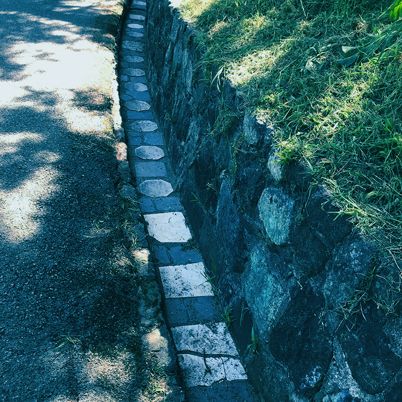 There are grave markers set along a paved pathway - some are octagons and some are square, they're arranged in an alternating pattern. The gravestones stand out because they are bright white against the other darker stones