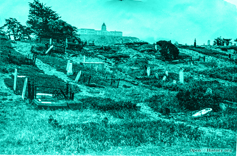 A photo of a hillside with grave markers being swallowed by vegetation. There is a lot of tall grass and scrub brush, and some cypress trees in the distance. Many markers are starting to lean as if they are about to fall over. The paths are obscured by dirt and overgrowth.