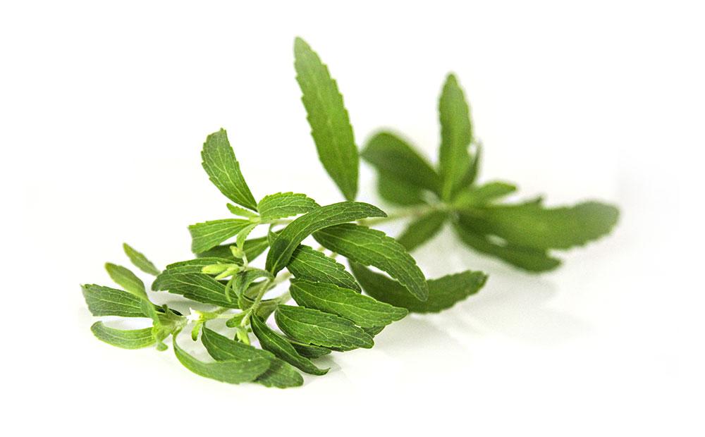 Wirkstoffe aus Stevia