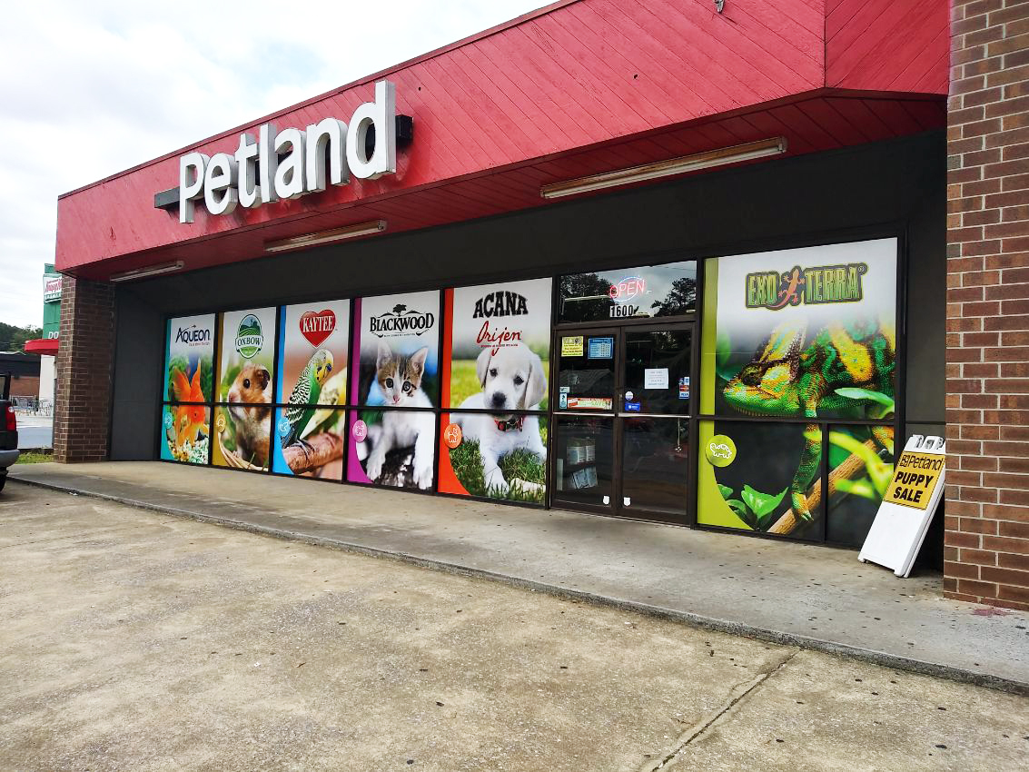 petland window graphics