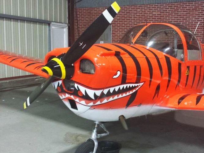 tiger plane decal