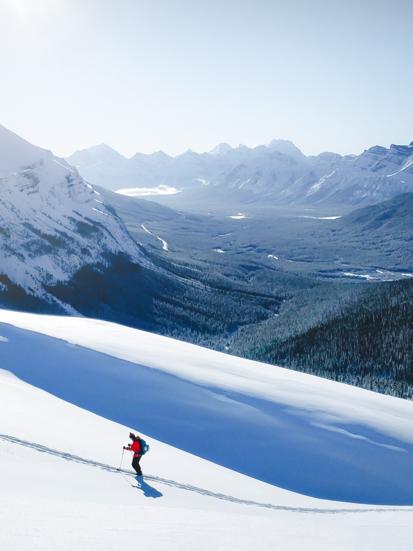 Splitboarder skinning past snow drift with the Icefields Parkway in the background