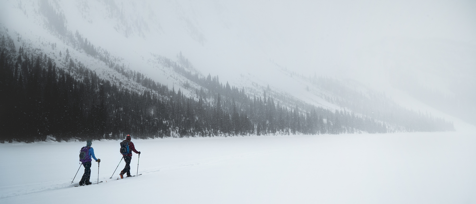 two backcountry skiiers touring on a foggy day at Sherbrooke Lake