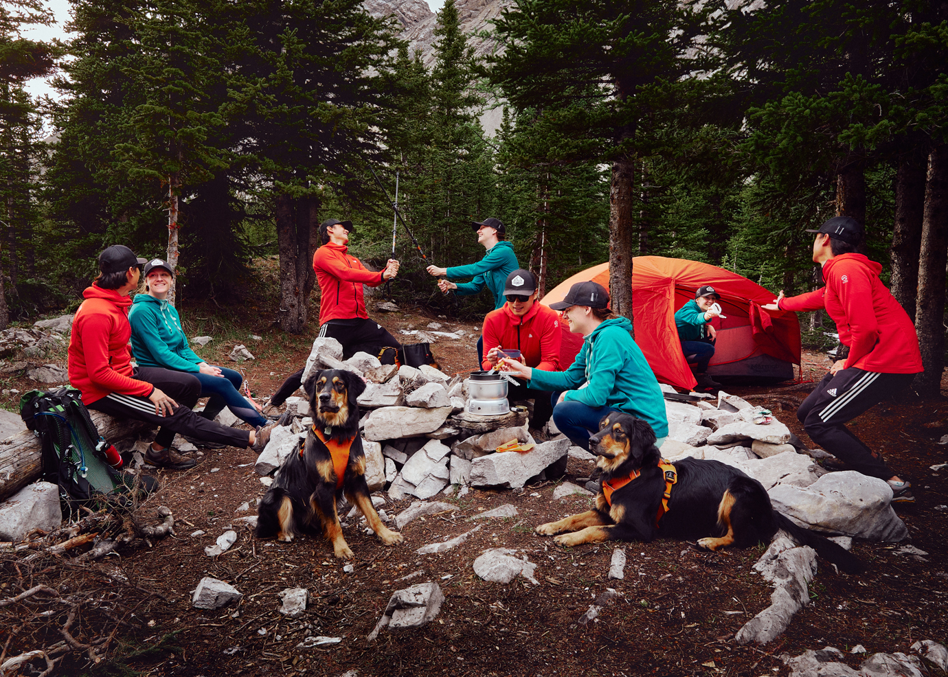 Two backcountry campers and their clones setting up camp with marmot limelight 3P and black dog in orange harness
