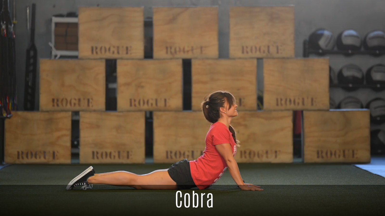 cobra stretch demo