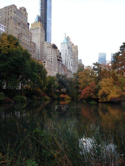 Travel tips Central Park New York