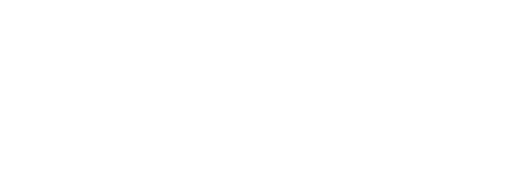 Salzburg Wedding Logo