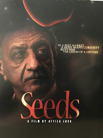 Poster of Seeds