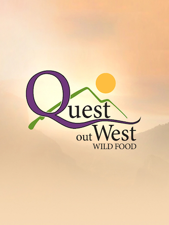 Poster of Quest Out West