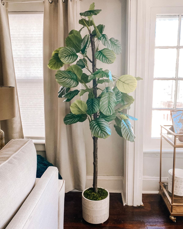 DIY Fiddle Leaf Tree