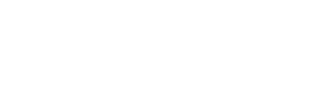 Service Design Network logo