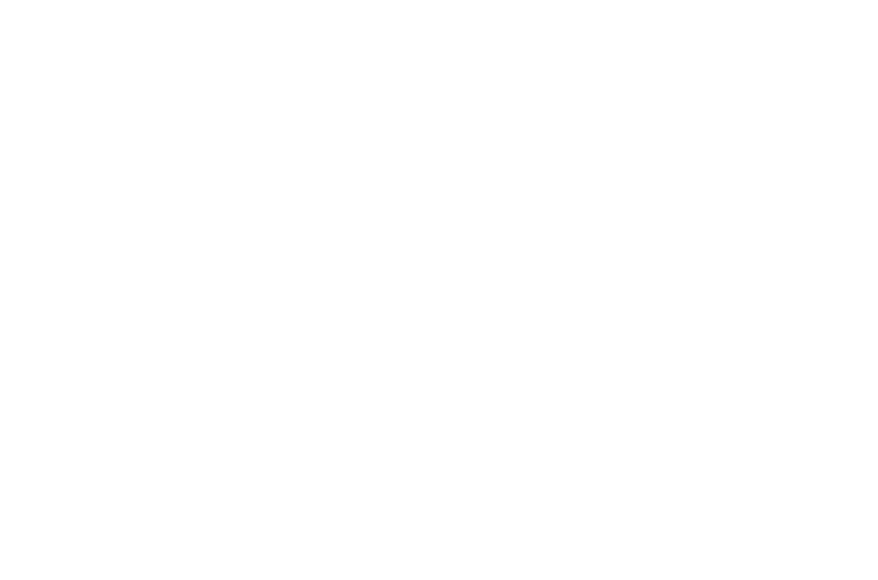 Mojo Nomad logo
