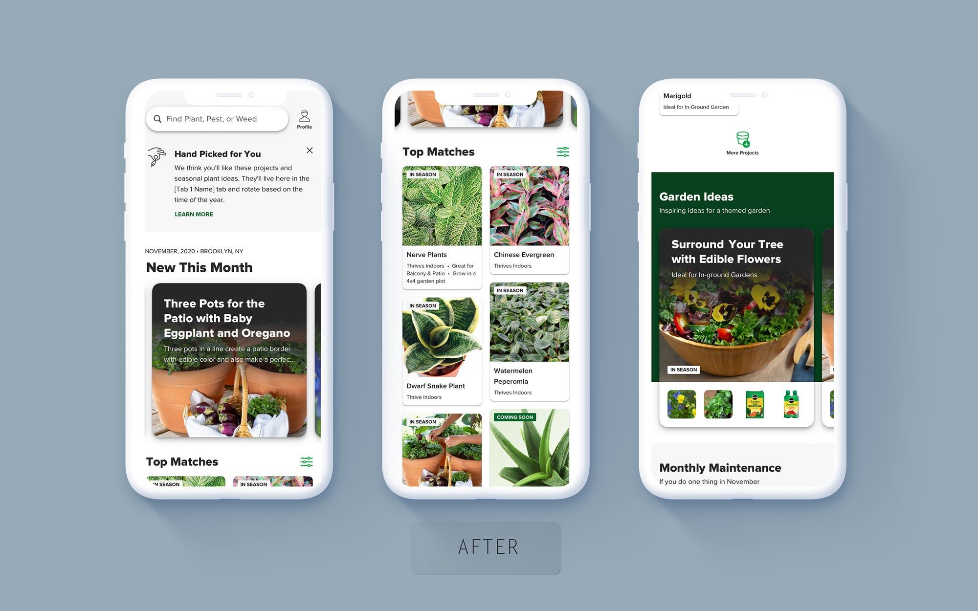 3 screenshots of the new home screen design.