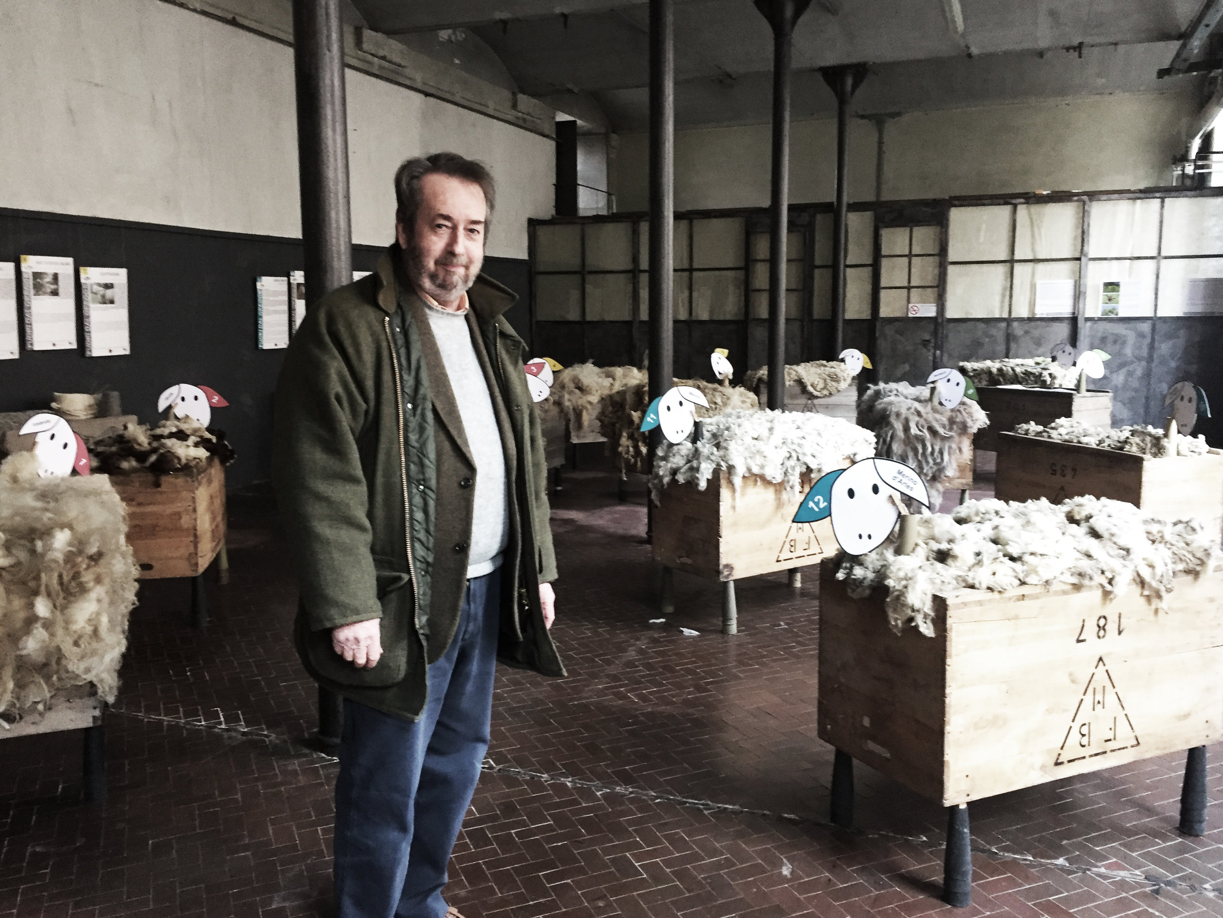 A man, Nigel Thompson, stands in the middle of a room with wooden crates full of different type of sheep's wool behind him