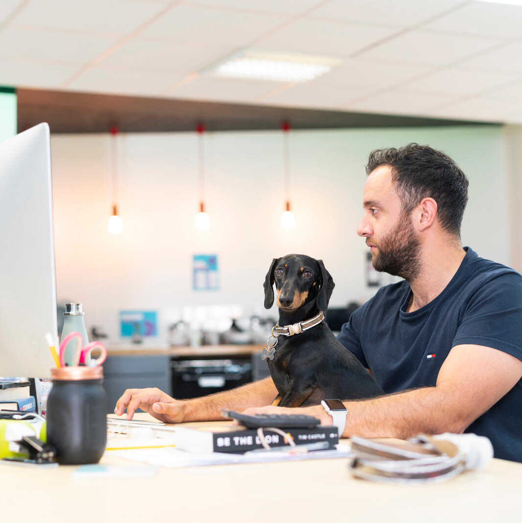 Man working with dog coworking space