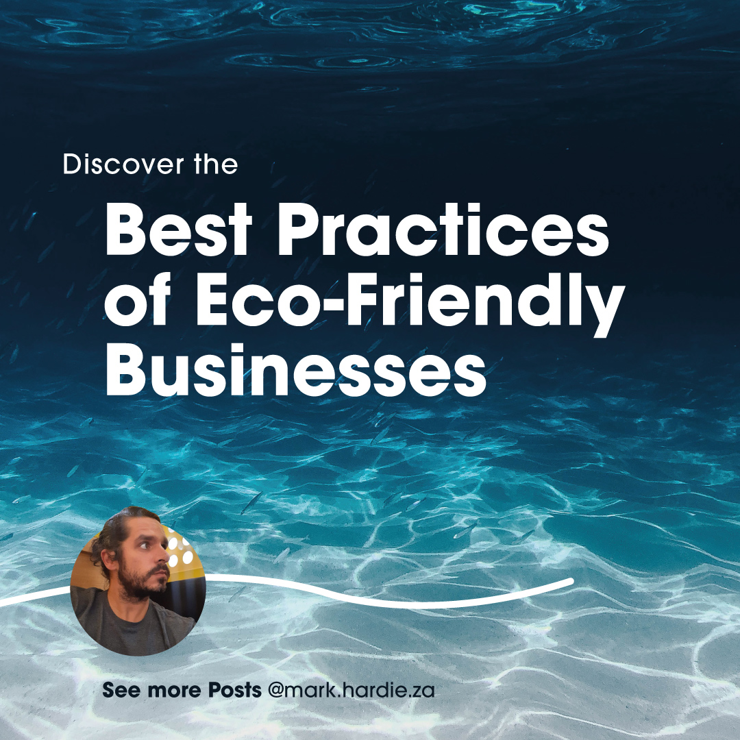 Best Practices of Eco-Friendly Businesses