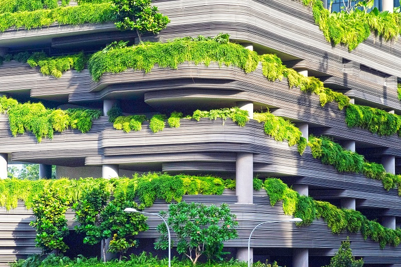 urban greenification - parking lot with plants