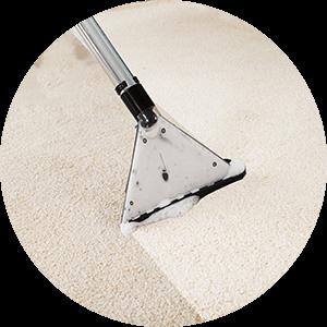 carpet-cleaning-carpet-cleaner-on-rug