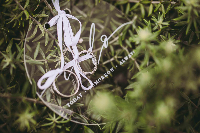 wedding rings in bush
