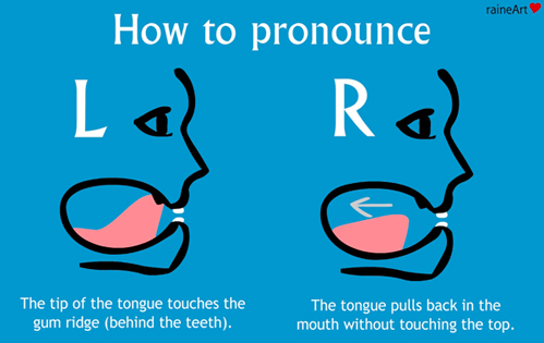 Tongue position explanation for English pronunciation of L and R.