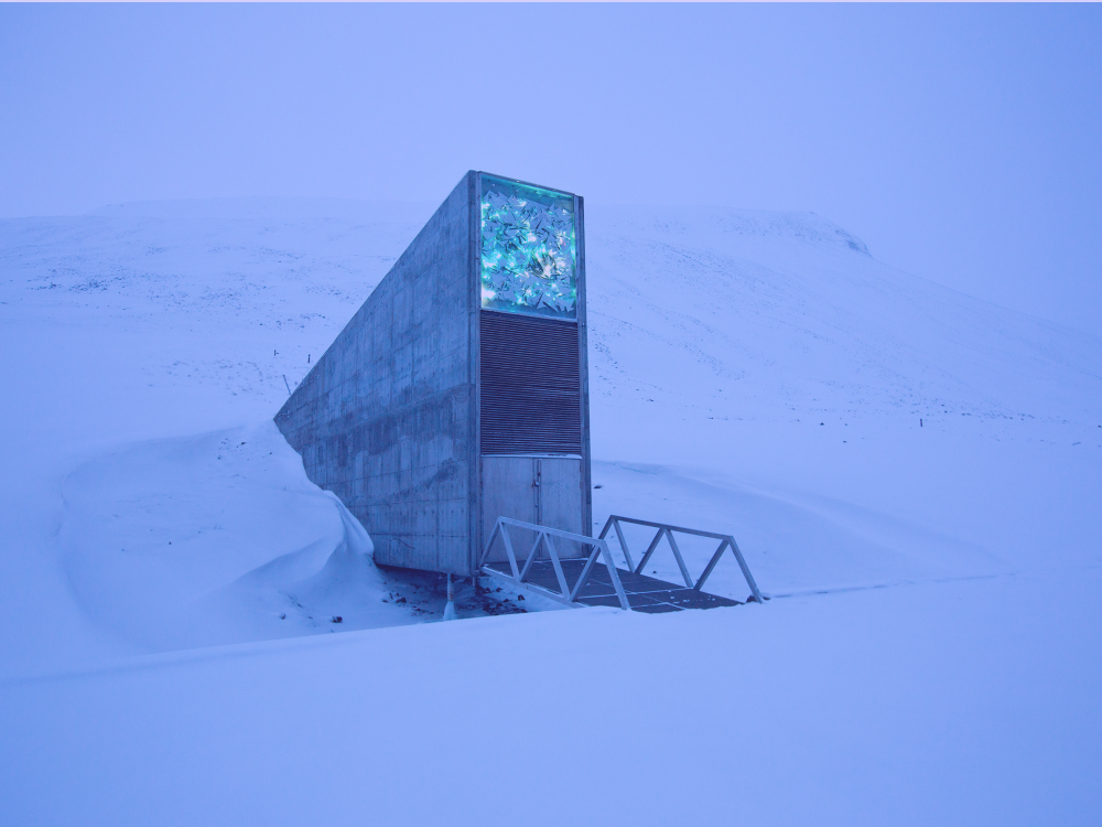 The Svalbard Global Seed Vault | Noah's Ark for Seeds