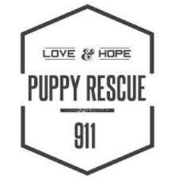 nonprofit animal rescue, animal rescue charity